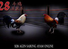 S128 Agen Sabung Ayam Online